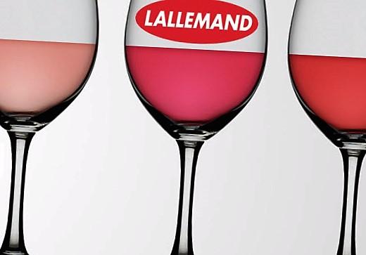 Punchy-Levadura-para-vino-rose