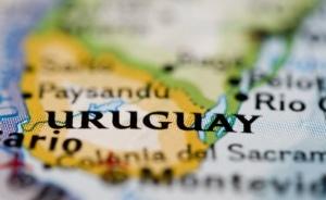 Vinos-del-Uruguay -Bodegas-Carrau-y-sus-vinos-tannat