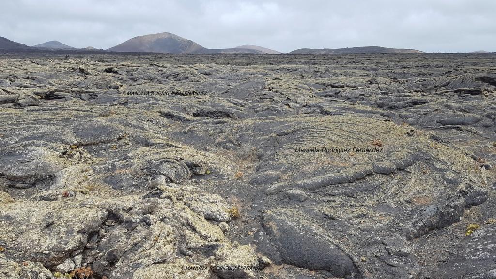 Las distintas formas de la tierra en Lanzarote y su cultivo